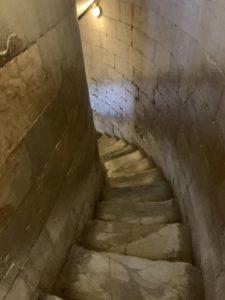 イタリア旅行記(2019)~③フィレンツェからピサの斜塔を上りに行く3